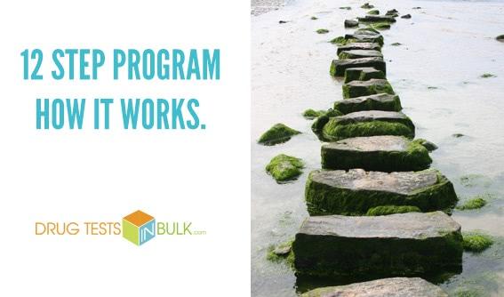 12 Step Program – How It Works