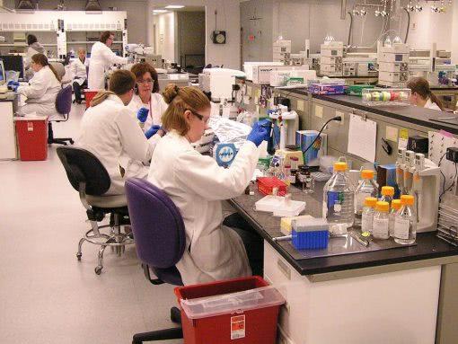 lab testing service