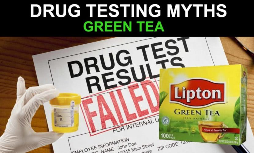Clearing Up the Myths of Marijuana Drug Testing