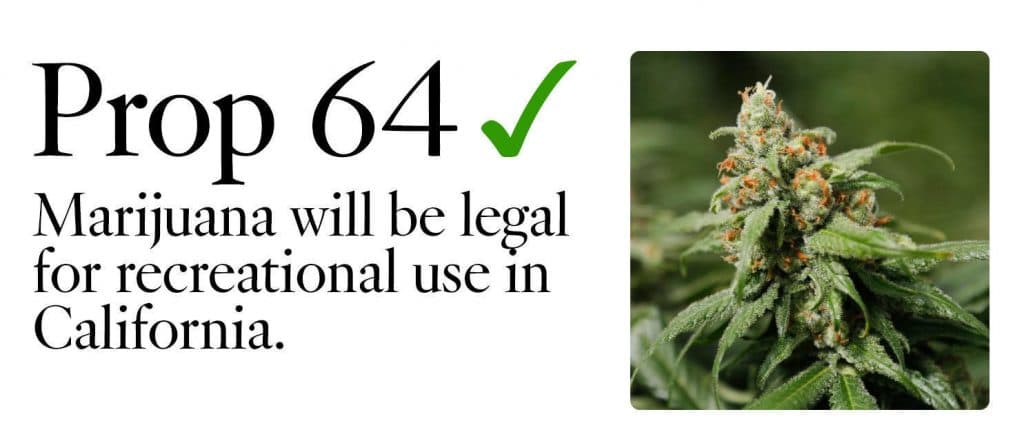 THE LEGALIZATION OF RECREATIONAL USE OF MARIJUANA IN CALIFORNIA: